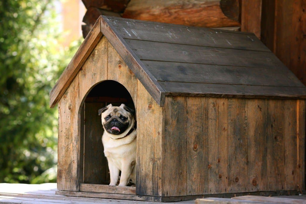 how to build a large dog house