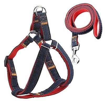 URPOWER Dog Leash Harness