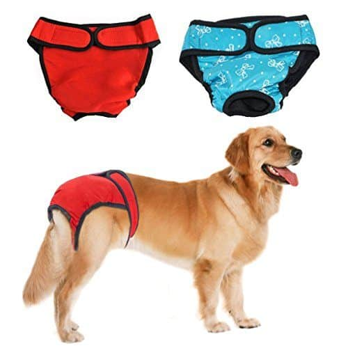 Bwogue Premium Dog Diapers Female Review