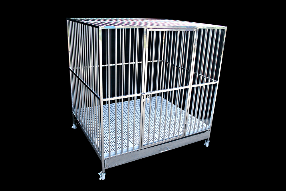 best escape proof dog crate for separation anxiety
