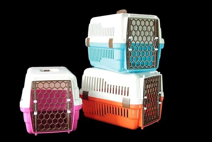 best crates for large dogs 6