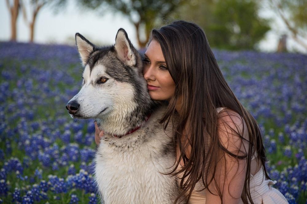 large size dog