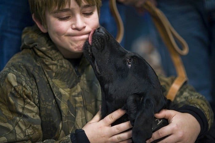 reasons kid should grow up with large dog
