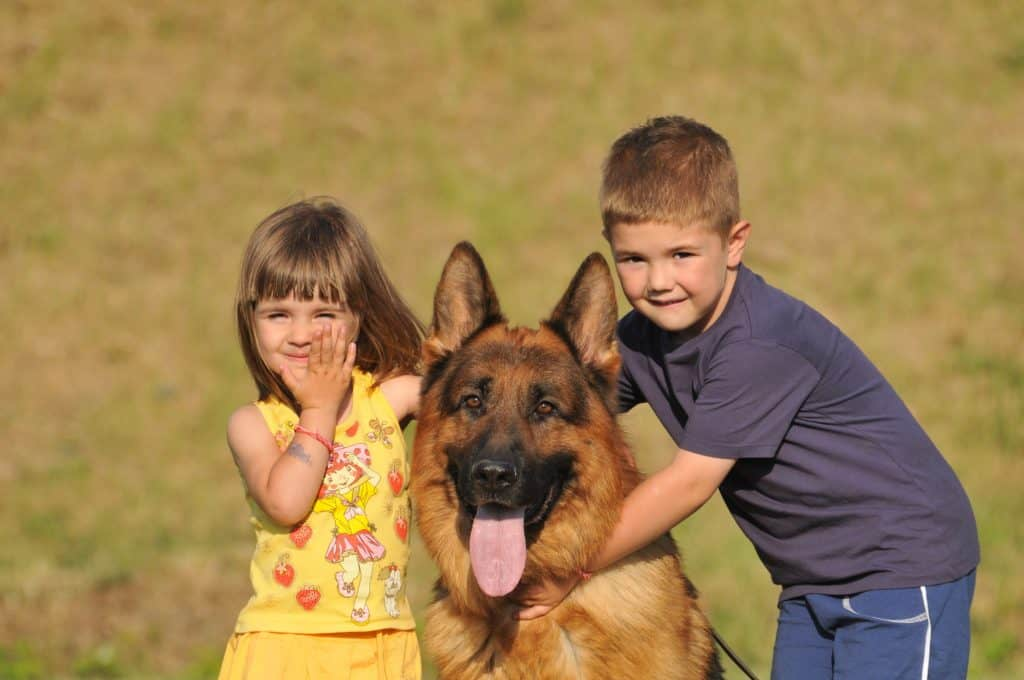 are german shepherds good with kids
