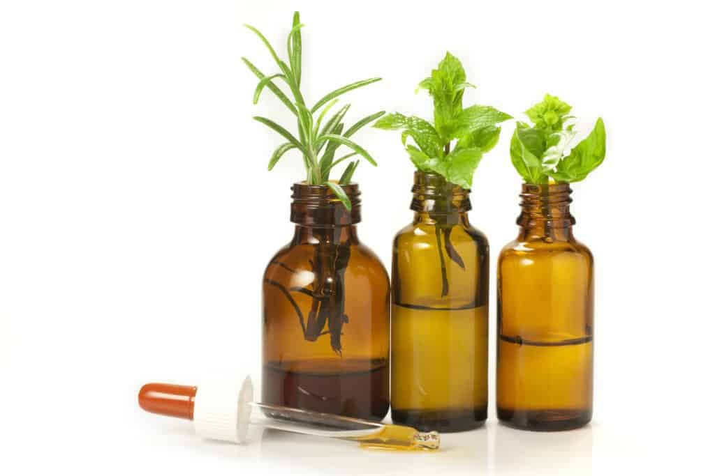 natural remedies for fleas