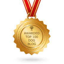Dog blogs