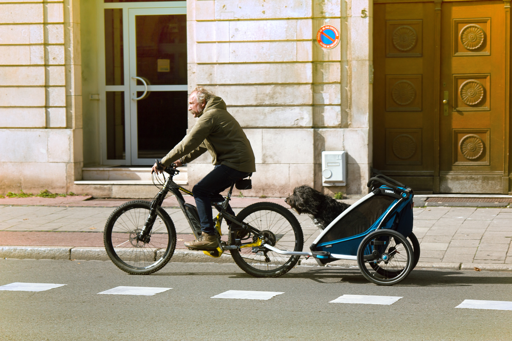 best dog bicycle trailer