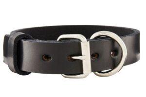 BlackJacks Leather Pitbull & Large Breeds Dog Collar
