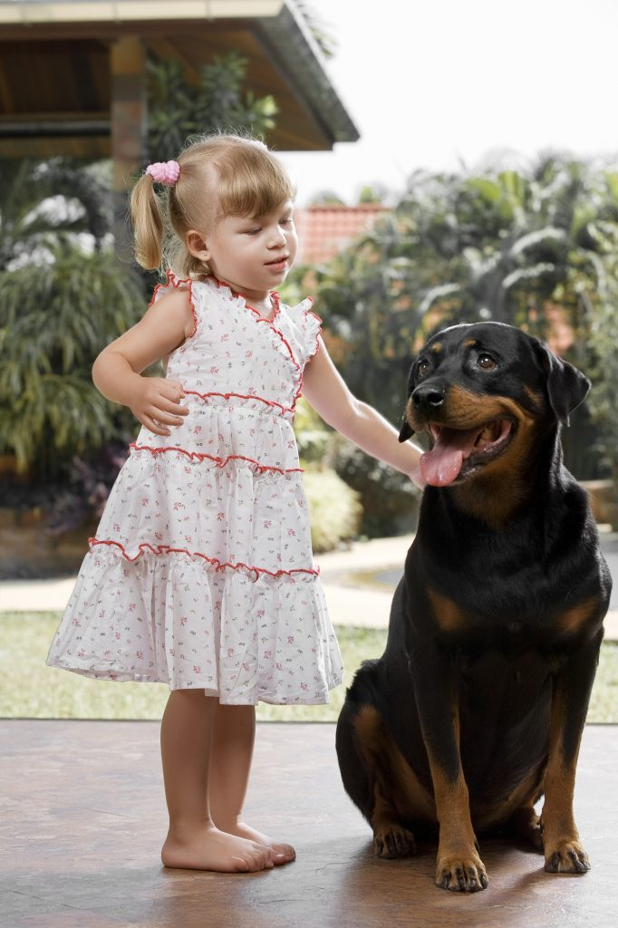 rottweiler with child