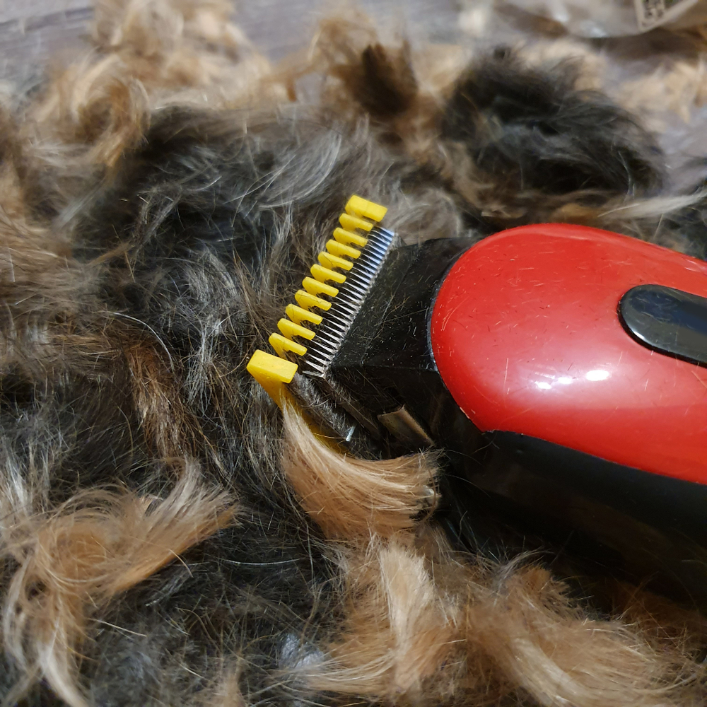 best clippers for matted dog hair