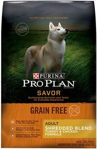 Best Grain Free Dog Food Brands for Large Dogs