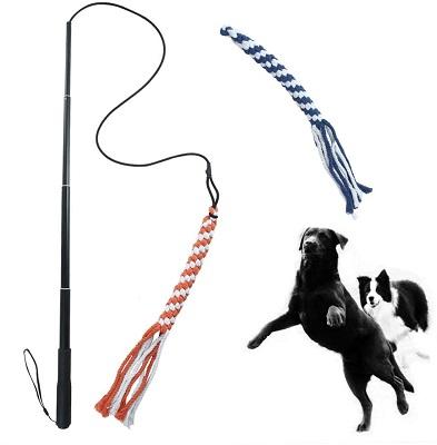 Aesocea Dog Extendable Teaser Wand